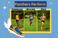 Panthers Perform at State Cross Country Championships