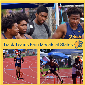 Track team members earn medals at states